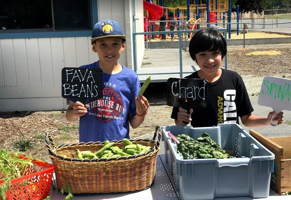 Sutter students selling produce at Farmers Market